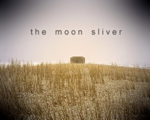 The Moon Sliver PC Full