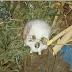 Macabro! Crânio humano é encontrado em via pública no centro de Itapecuru