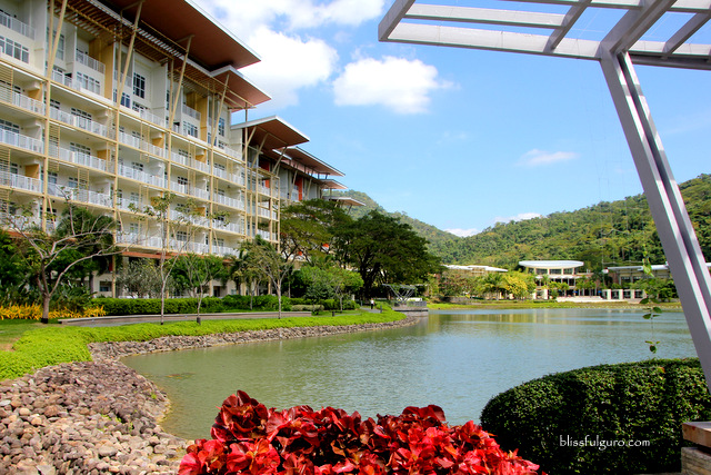 Pico de Loro Cove Hamilo Coast Blog
