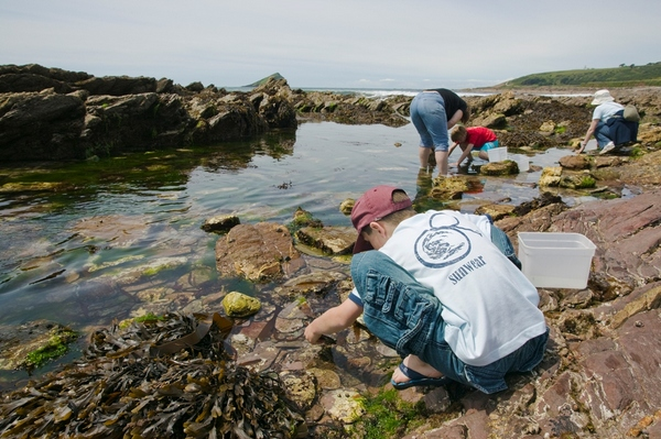 A rockpool safari at Wembury Marine Centre. Photo copyright Nigel Hicks (All rights reserved)