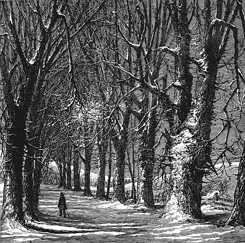 Harry Fenn illustration, country road in winter