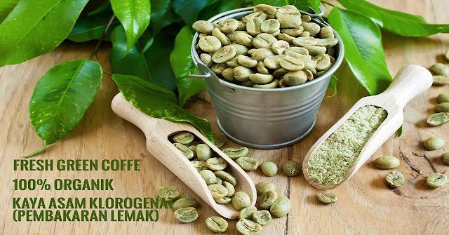 kopi hiau, penurun berat badan, diet sehat, diet green coffee, diet kopi hijau,