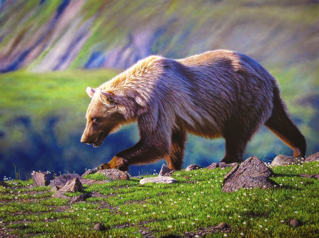 03-Grizzly-Bear-Nick-Sider-Realistic-Animal-Paintings-more-than-a-Photo-Image-www-designstack-co