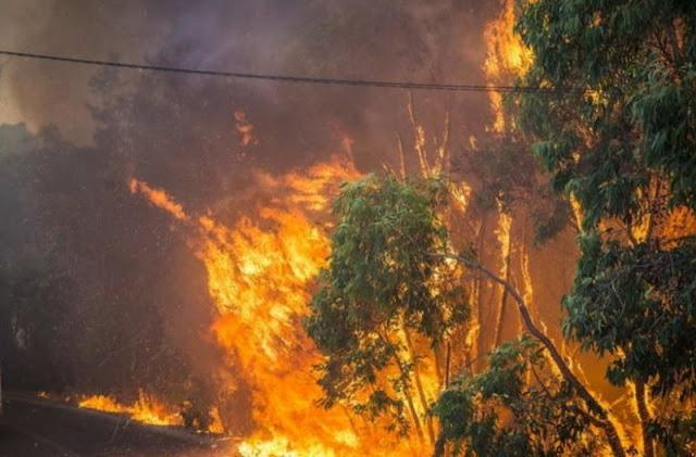 Έκτακτο: Ισχυρή πυρκαγιά ξέσπασε στην χώρα!