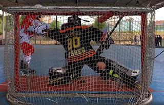 Hockey Línea Tigres