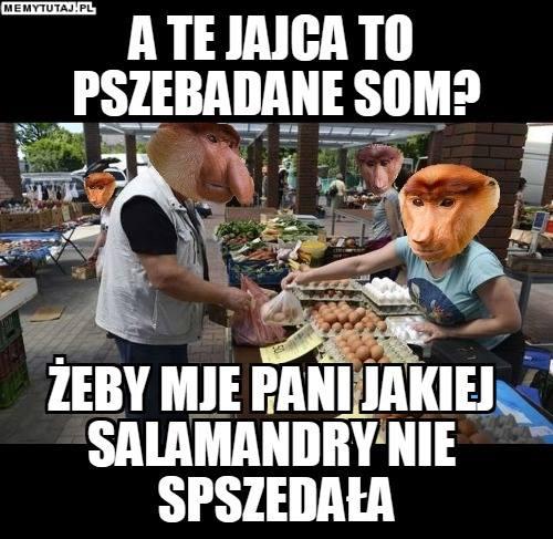 """Oto """"Polska Królowa Memów"""" - Anna Łanocha [WYWIAD]"""