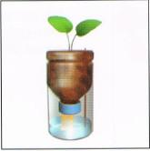 membuat-tanaman-hidorponik-sumbu