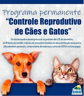 Prefeitura de Juquiá realiza campanha de castração de cães e gatos.