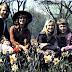 ABBA - Star Portain