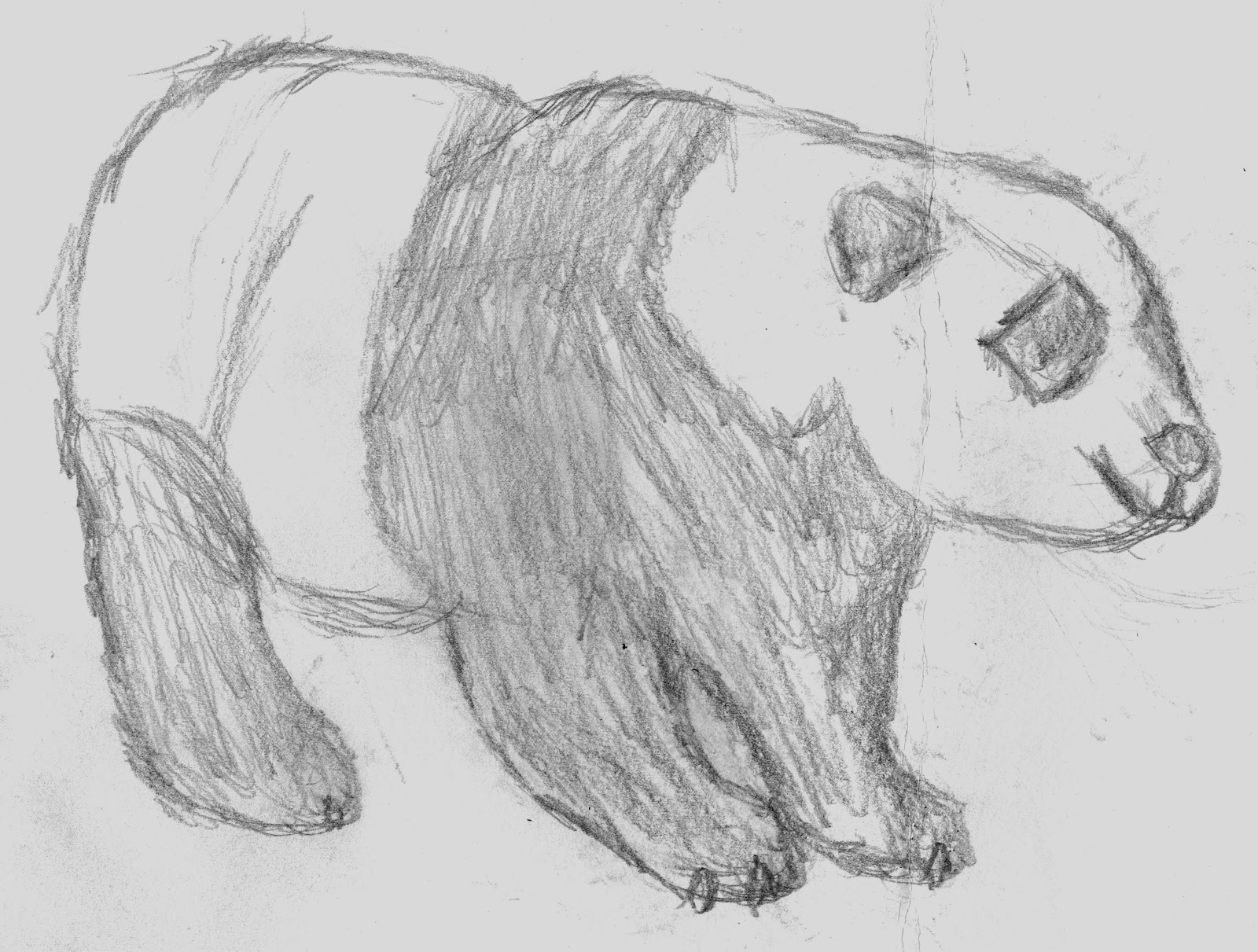Second Observational Drawing Blog