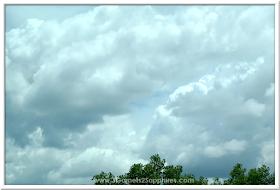 Oversized Clouds  |  3 Garnets & 2 Sapphires