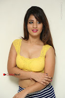 Cute Telugu Actress Shunaya Solanki High Definition Spicy Pos in Yellow Top and Skirt  0057.JPG
