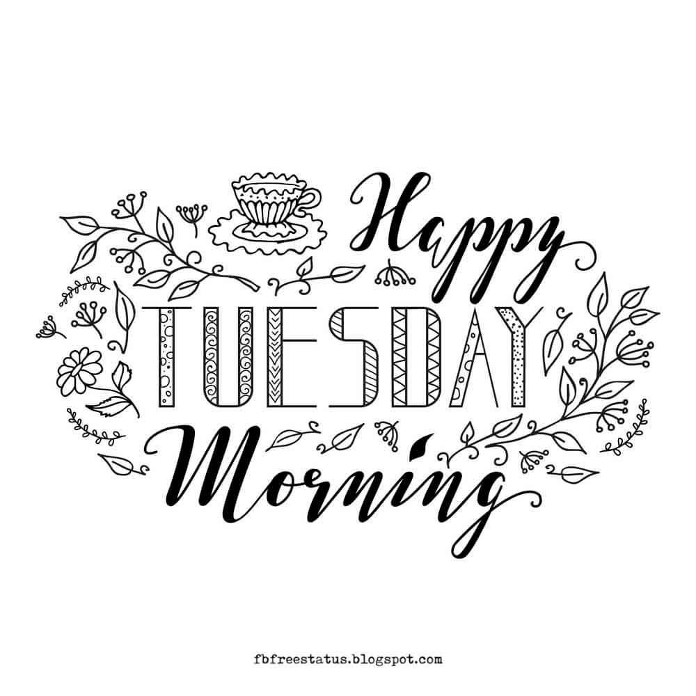 Happy Tuesday Morning.