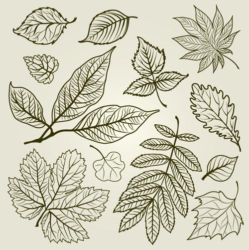 hojas de otoño dibujadas a mano