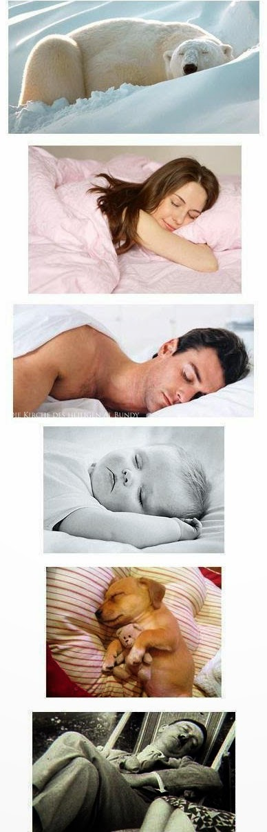 Lustige Bilder Hitler beim schlafen Witzige spassbilder