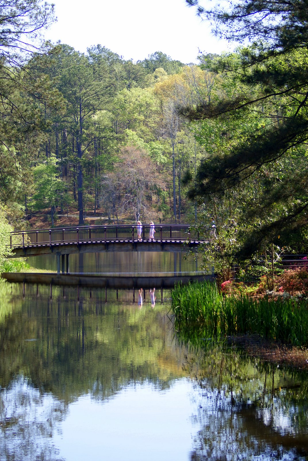 Georgia Garden: A Little Loveliness: A Stroll Through Callaway Gardens