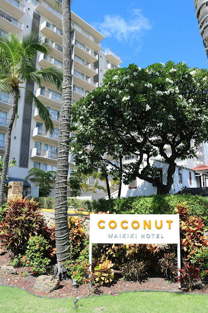 Coconut Waikiki Hawaii Hotel Review - Self Catering Boutique Hotel Accommodation Honolulu