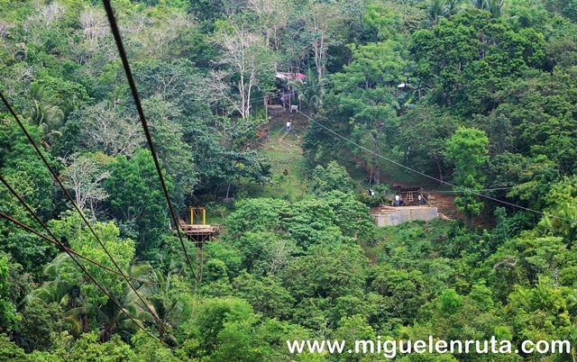 Selva-Bohol-Filipinas