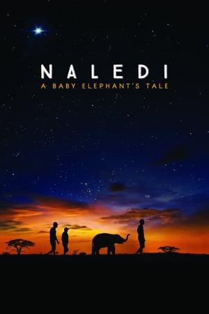 Poster Naledi: A Baby Elephant's Tale 2016