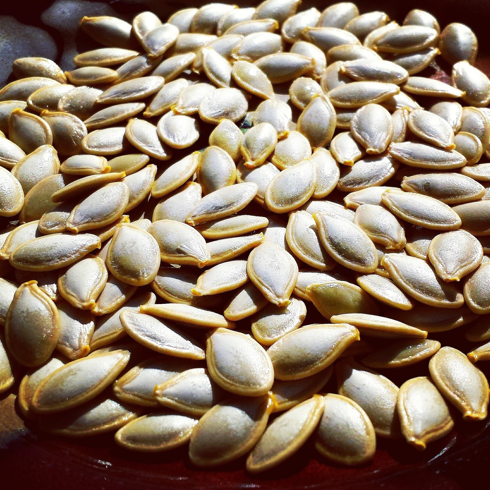How To Save Pumpkin Seed