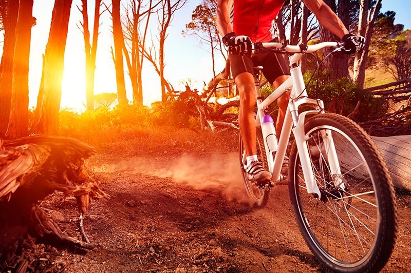 e7672f17f Pedalar não é simplesmente um exercício e tanto para pernas e bumbum – essa  é apenas uma das razões pelas quais vale muito a pena colocar a bicicleta  na ...