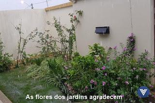 http://vnoticia.com.br/noticia/3454-apos-periodo-de-seca-chuva-chega-a-sao-francisco-de-itabapoana