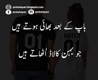 Sister and Brother Love Quotes in Urdu