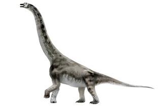 Abydosaurus Dinozoru İlginç Bilgiler