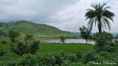 गावच्या तळ्याजवळील हिरवळ