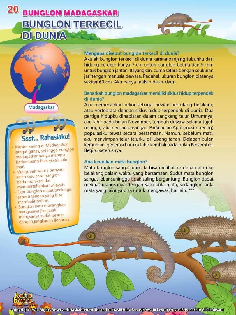 Bunglon Madagaskar adalah Bunglon Terkecil di Dunia