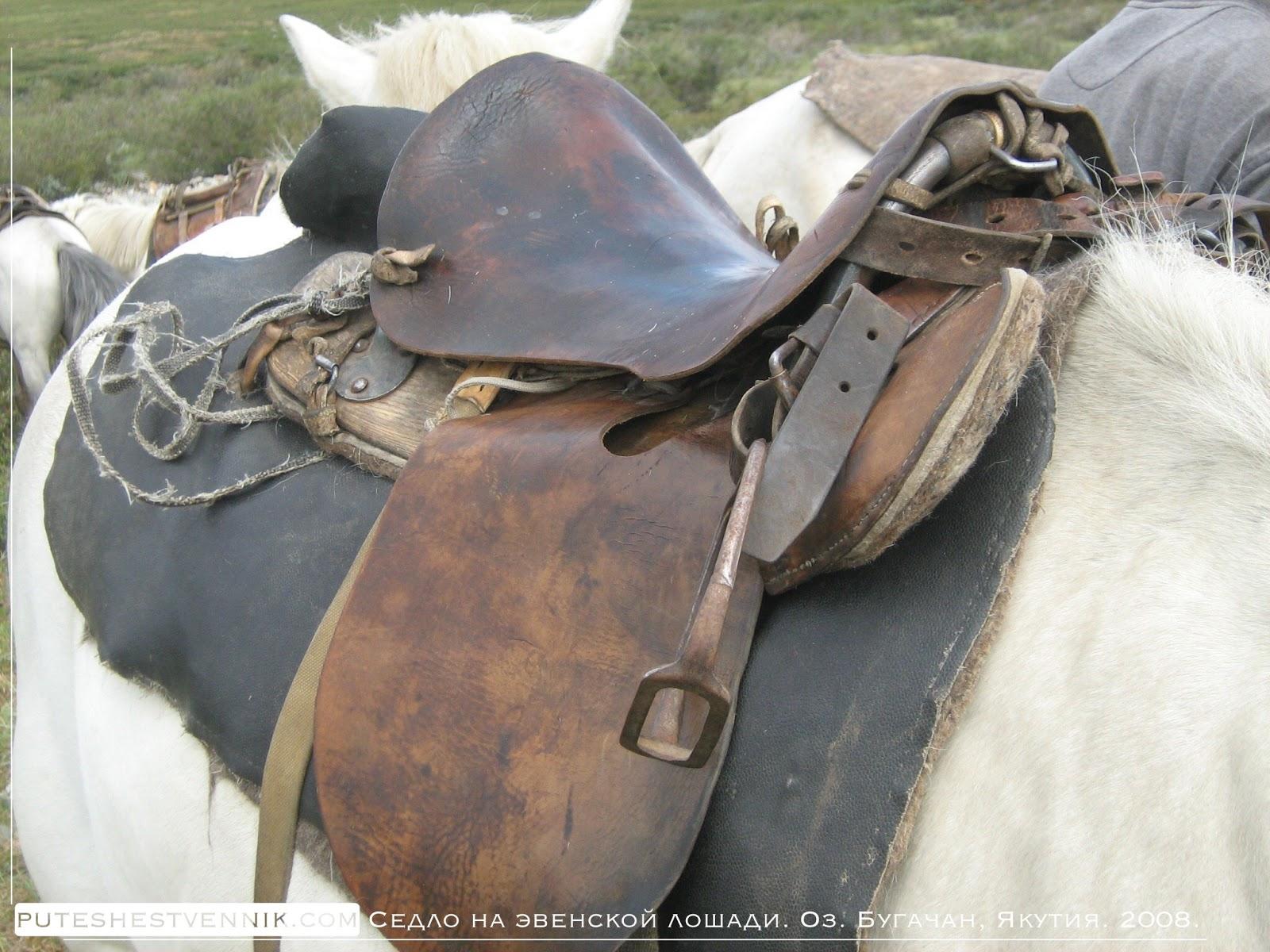 Седло эвенской лошади