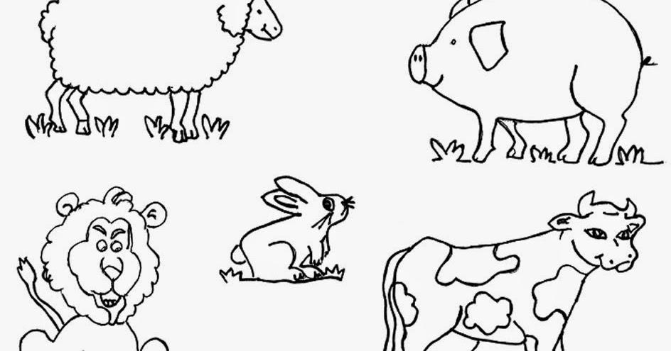 Imagenes Para Colorear De Español: Imagenes De Animales Omnivoros Para Colorear Www