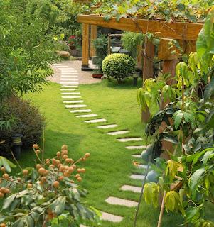 Amazing Landscape Gardening Ideas