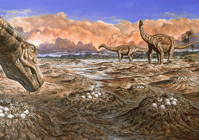 Testing ideas about the evolution of long-necked sauropod dinosaurs