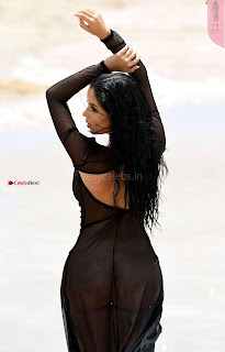 Demi-Rose-Pictureshoot-on-a-Beach--10+%7E+SexyCelebs.in+Exclusive.jpg