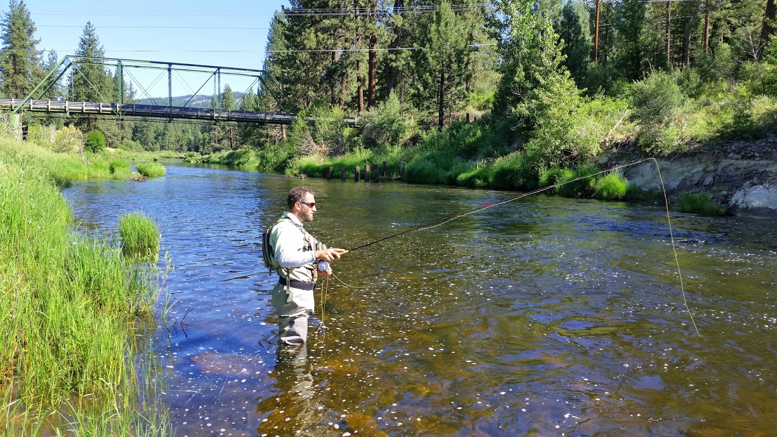 Lake davis frenchman 39 s lake middle fork feather for Feather river fishing report