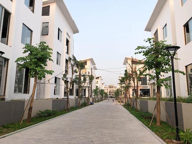 Khuôn viên nội khu đang được xây dựng hoàn thiện
