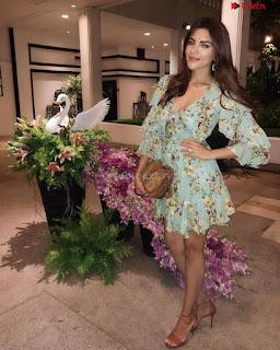 Shama Sikandar Beautiful Stunning Deep neck Gowns Bikini Inners 028.jpg