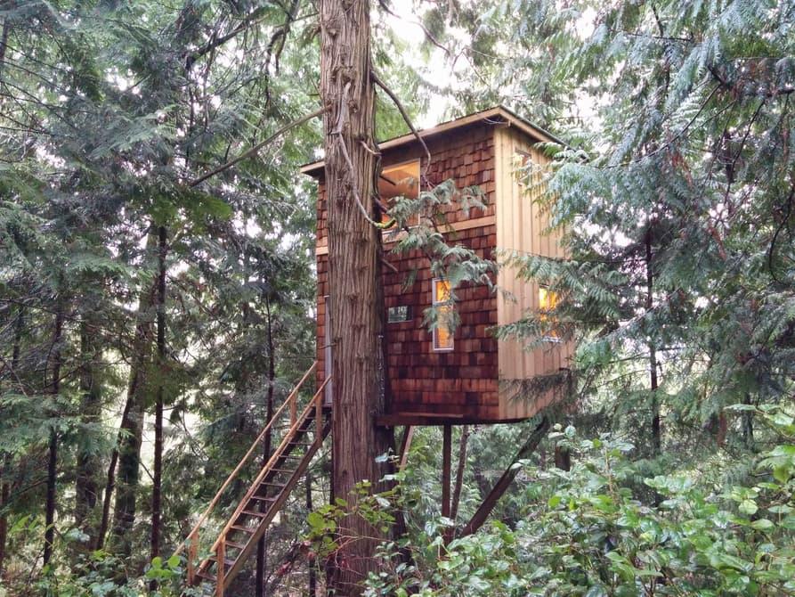 Tiny House Town A 8 500 Tiny Treehouse