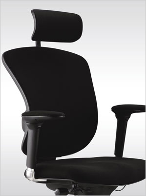 Inspirational Check for these features when selecting an ergonomic chair