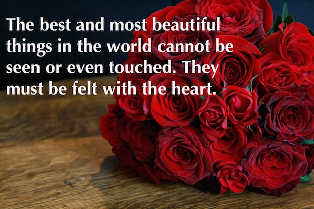 20 Lovely Valentine's Day Quotes 2