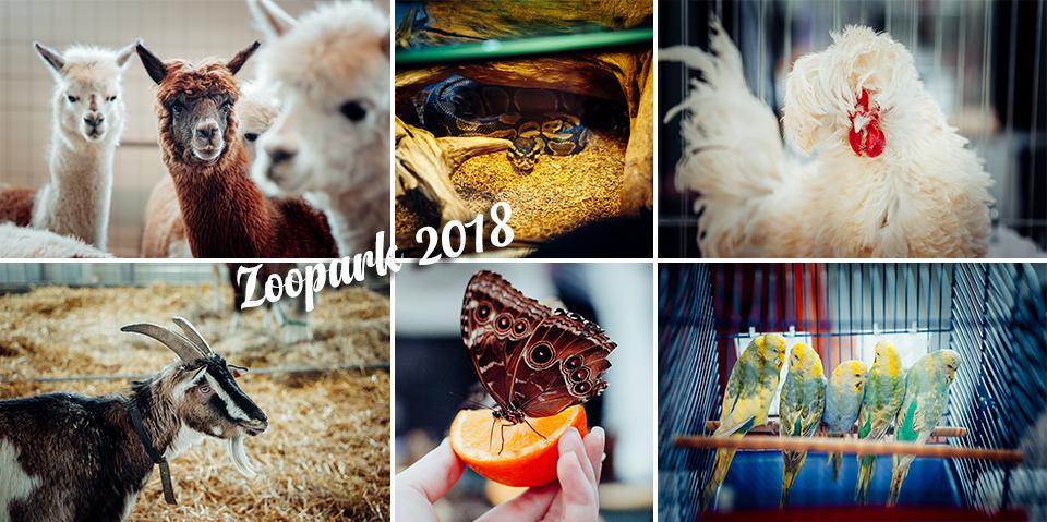 Lubelska Wystawa Zoologiczna Zoopark 2018 | Targi Lublin
