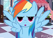 Rainbow Dash PonyCam