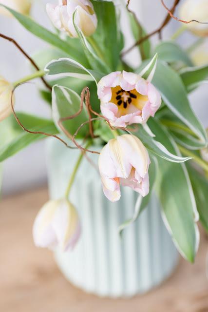 Friday Flowerday, Tulpen, Pomponetti