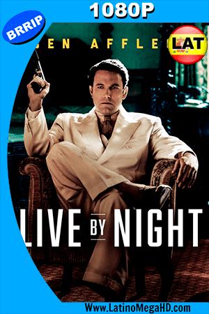 Vivir de Noche (2016) Latino HD 1080P ()