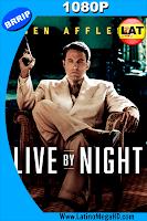 Vivir de Noche (2016) Latino HD 1080P - 2016