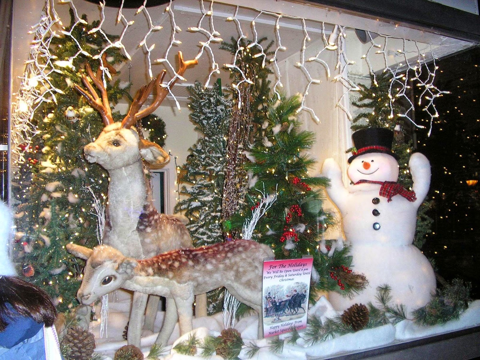 Design Home Pictures: Lighted Christmas Decorations