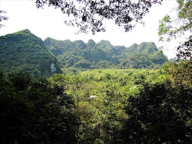 cat ba national park cat ba halong bay vietnam