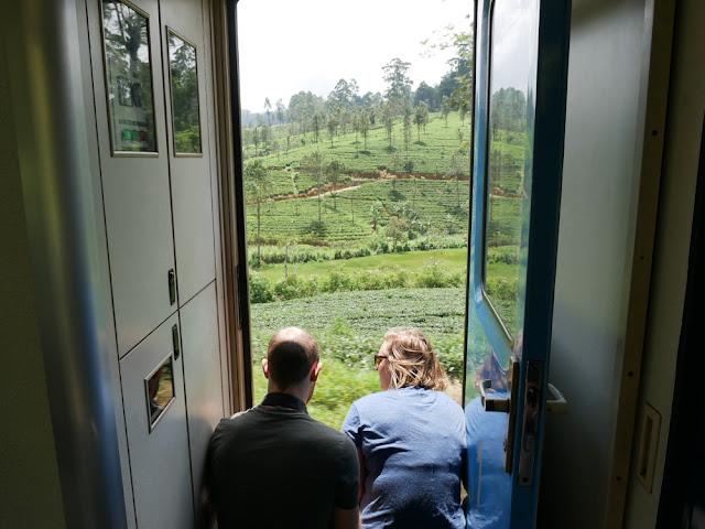 Views over the tea plantations - Kandy to Nanu Oya train - Sri Lanka