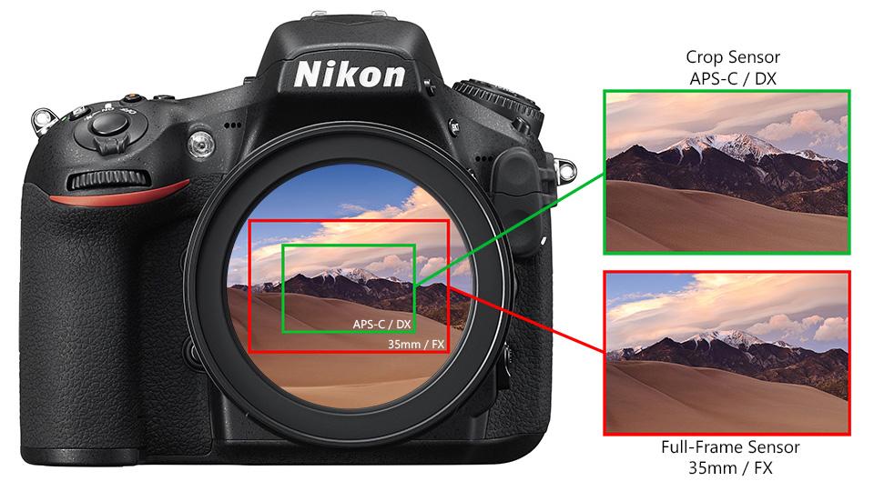 jenis kamera dalam dunia fotografi